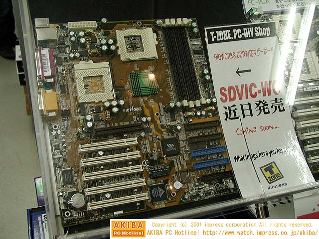 RioWorks SDVIC-WO