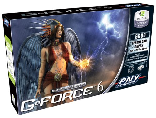 PNY Verto GeForce 6600 AGP Box