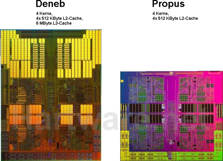 AMD Deneb vs. Propus